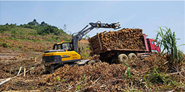 轮式挖掘机抓木机工况图