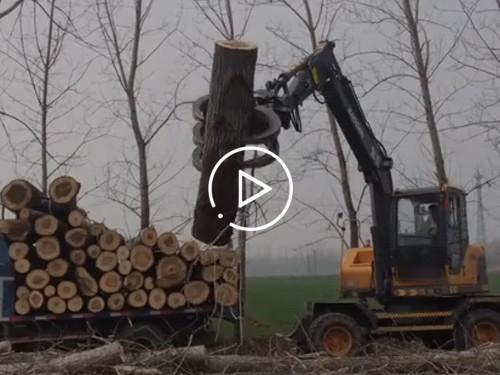 广东地区宝鼎新款抓木机95型号工作视频展示介绍