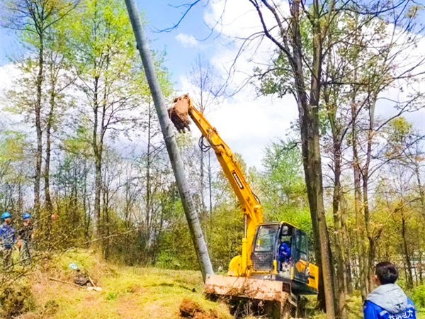 宝鼎轮式挖掘机抓木机多工况适应能力强客户回报率优异