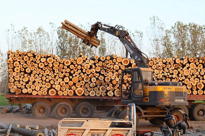 抓木机装车