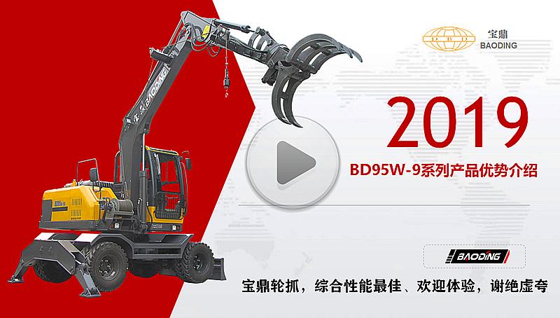 宝鼎BD95W轮式抓木机