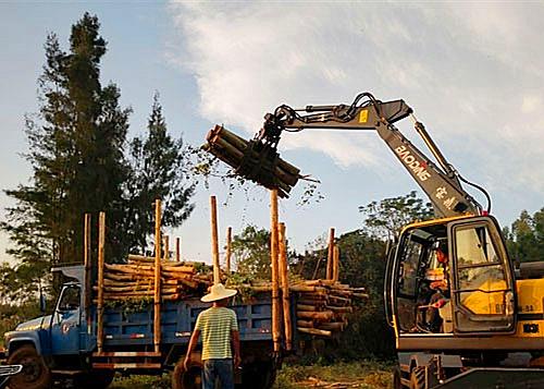 宝鼎多功能轮式挖掘机抓木机