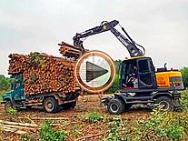 宝鼎广西抓木机装树视频