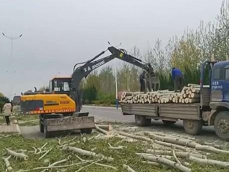 宝鼎抓木机精品BD95W系列-带来抓木机使用品质感