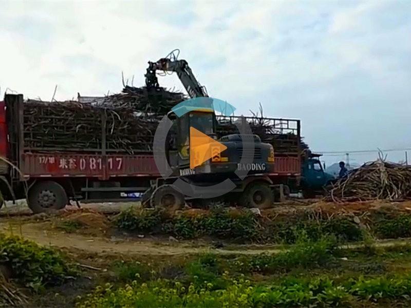 柳州抓木机抓甘蔗机作业