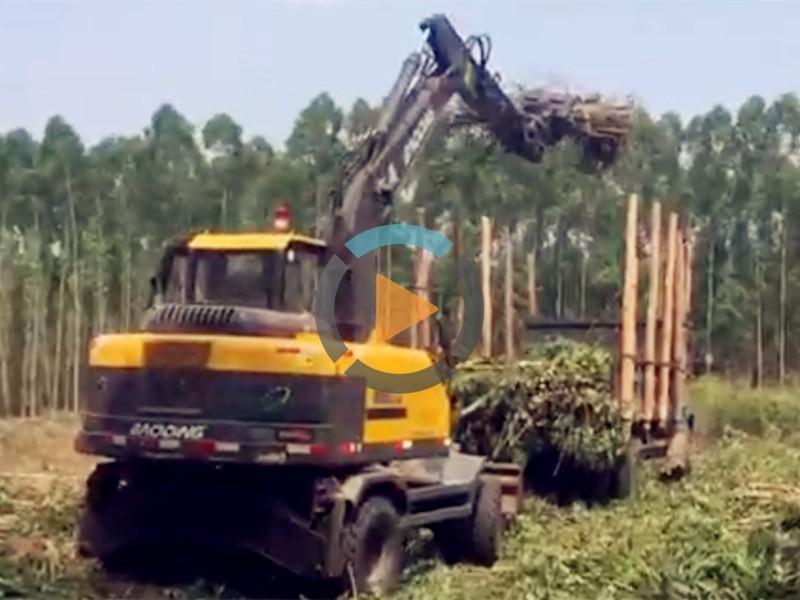 广东宝鼎95抓木机工作视频