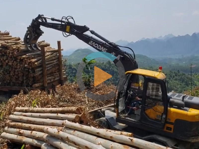 广西抓木机工作视频-宝鼎95A轮式抓木机